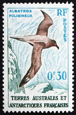sooty: FRENCH SOUTHERN AND ANTARCTIC TERRITORIES - CIRCA 1959: a stamp printed in the France shows Light-mantled Sooty Albatross, Phoebetria Palpebrata, circa 1959 Editorial