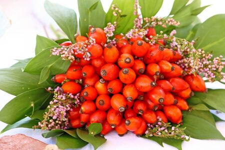 Bouquet of ripe rose hip fruits photo