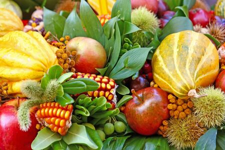 Some colorful seasonal, autumn fruits and vegetables photo