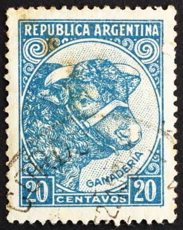 cattle breeding: ARGENTINA - CIRCA 1942: a stamp printed in the Argentina shows Bull, Cattle Breeding, circa 1942