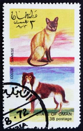 OMAN - CIRCA 1972: un timbre imprimé en Oman montre Siamese Cat and Dog Collie, vers 1972