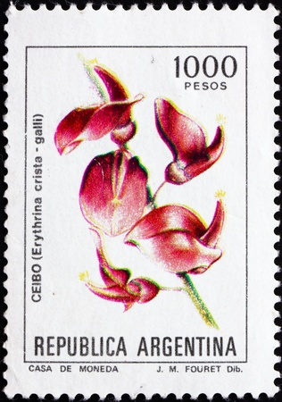 erythrina: ARGENTINA - CIRCA 1982: a stamp printed in the Argentina shows Cockspur Coral Tree, Erythrina Crista-galli, circa 1982