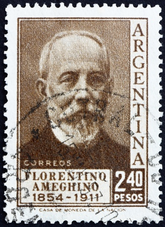 anthropologist: ARGENTINA - CIRCA 1956: a stamp printed in the Argentina shows Florentino Ameghino, Anthropologist, circa 1956