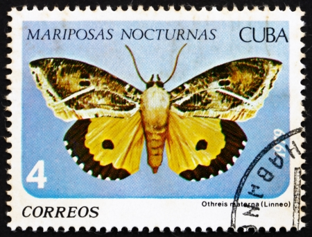 cuba butterfly: CUBA - CIRCA 1979: a stamp printed in the Cuba shows Othreis Materna, Nocturnal Butterfly, circa 1979