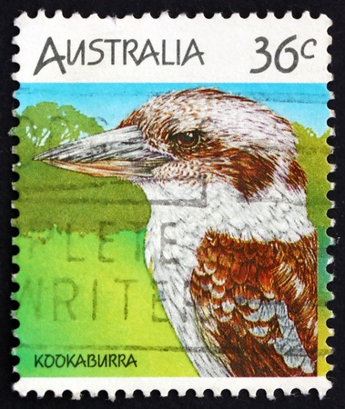 AUSTRALIA - CIRCA 1986: a stamp printed in the Australia shows Kookaburra, Dacelo, Australian Wildlife, circa 1986