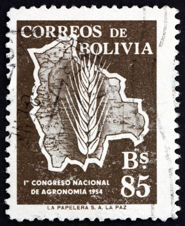 national congress: BOLIVIA - CIRCA 1954: a stamp printed in the Bolivia shows Map of Bolivia and Ear of Wheat, National Congress of Agronomy, circa 1954