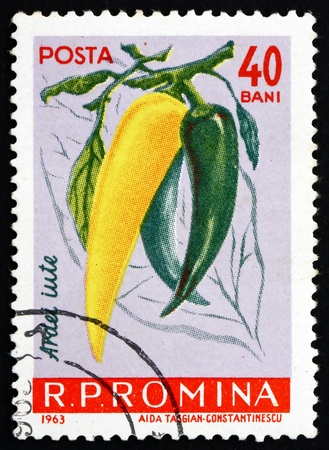 ROMANIA - CIRCA 1963: a stamp printed in the Romania shows Hot Peppers, Chili Peppers, Capiscum, circa 1963