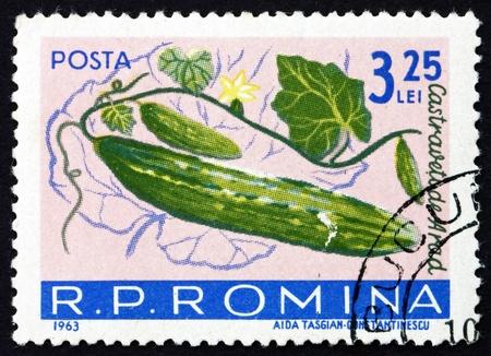 cucumis sativus: ROMANIA - CIRCA 1963: a stamp printed in the Romania shows Cucumbers, Cucumis Sativus, Fruit, circa 1963 Editorial