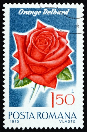 ROMANIA - CIRCA 1970: a stamp printed in the Romania shows Orange Delbard, Rose Cultivar, Flower, circa 1970 Stock Photo - 17063373
