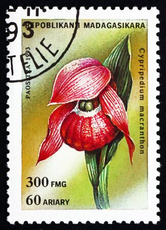 lady's slipper: REPUBLICA MALAGASY - CIRCA 1993: a stamp printed in the Malagasy (Madagascar) shows Lady�s Slipper, Cypripedium Macranthon, Orchid, circa 1993