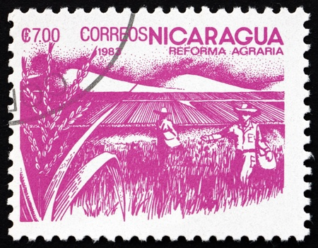 agrarian: NICARAGUA - CIRCA 1983: a stamp printed in Nicaragua shows Rice Paddy, Agrarian Reform, circa 1983