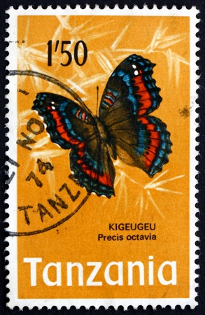 gaudy: TANZANIA - CIRCA 1973: a stamp printed in the Tanzania shows Gaudy Commodore, Precis Octavia, Butterfly, circa 1973