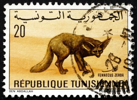 TUNISIA - CIRCA 1968: a stamp printed in Tunisia shows Desert Fox, Fennecus Zerda, Vulpes Zerda, circa 1968