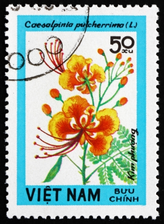 VIETNAM - CIRCA 1984: a stamp printed in Vietnam shows Poinciana, Caesalpinia Pulcherrima, Wildflower, circa 1984 Stock Photo - 17523416