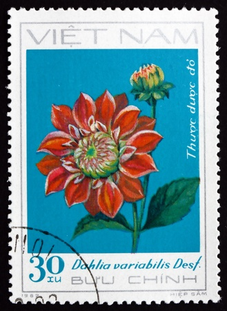 VIETNAM - CIRCA 1984: a stamp printed in Vietnam shows Georgina, Dahlia Variabilis Desf., Flower, circa 1984 Stock Photo - 17523412