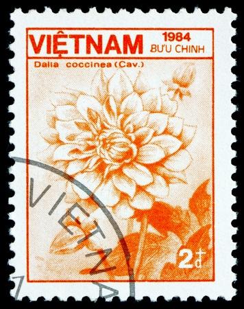 VIETNAM - CIRCA 1984: a stamp printed in Vietnam shows Georgina, Dahlia Coccinea, Flower, circa 1984 Stock Photo - 17523419