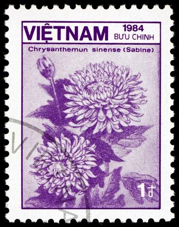 VIETNAM - CIRCA 1984: a stamp printed in Vietnam shows Chrysanthemum Sinense Sabine, Flower, circa 1984 Stock Photo - 17523423
