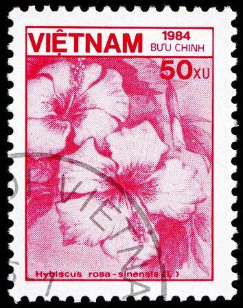 VIETNAM - CIRCA 1984: a stamp printed in Vietnam shows Rose Mallow, Hibiscus Rosa-sinensis, Flower, circa 1984 Stock Photo - 17523429