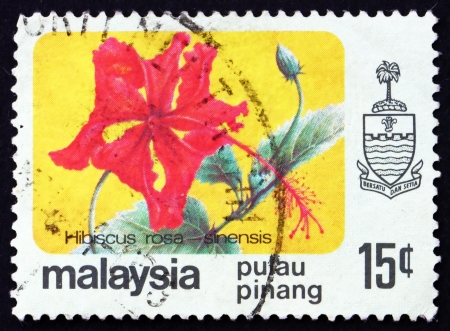 mallow: MALAYSIA - CIRCA 1986: a stamp printed in Malaysia shows Rose Mallow, Hibiscus Rosa-sinensis, Flower, circa 1986 Editorial
