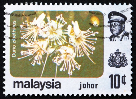 MALAYSIA - CIRCA 1979: a stamp printed in Malaysia shows Durian, Durio Zibethinus, Flower, circa 1979 Stock Photo - 17523440