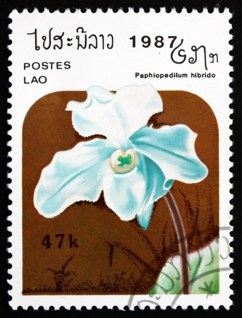 LAOS - CIRCA 1987: a stamp printed in Laos shows Paphiopedilum Hybrid, Orchid, Flower, circa 1987 Stock Photo - 17523432