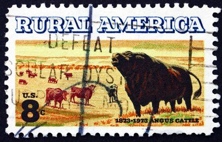 longhorn cattle: ESTADOS UNIDOS DE AMERICA - CIRCA 1973: un sello impreso en los EE.UU. muestra Ganado Angus y Longhorn, Centenario de la introducci�n de ganado Angus a EE.UU., alrededor del a�o 1973 Editorial
