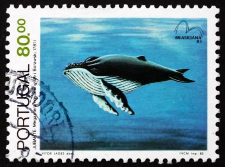 baleen whale: PORTUGAL - CIRCA 1983: un sello impreso en la muestra Portugal ballena jorobada, Megaptera novaeangliae, ballena, Mam�fero del mar en peligro de extinci�n, alrededor de 1983
