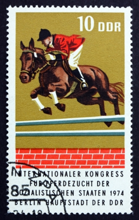 hurdling: GDR - CIRCA 1974: a stamp printed in GDR shows Thoroughbred Hurdling, Race Horse, International Horse Breeders� of Socialist Countries, Berlin, circa 1974