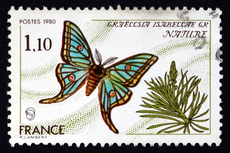 FRANCE - CIRCA 1980: un timbre imprimé en France montre Espagnol Lune Moth, Graellisia Isabellae, Moth, circa 1980