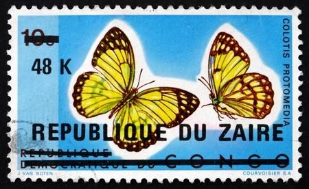 splendour: ZAIRE - CIRCA 1977: a stamp printed in the Zaire shows Yellow Splendour Tip, Colotis Protomedia, Butterfly, circa 1977 Editorial