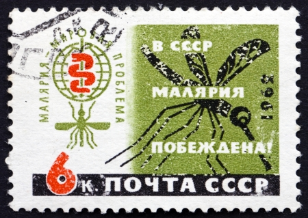 eradicate: RUSSIA - CIRCA 1962: a stamp printed in the Russia shows Malaria Eradication Emblem and Mosquito, WHO Drive to Eradicate Malaria, circa 1962