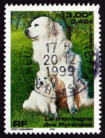 pyrenean mountain dog: FRANCE - CIRCA 1999: a stamp printed in the France shows Pyrenean Mountain Dog, Pet, circa 1999