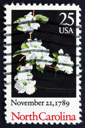 ratificaci�n: ESTADOS UNIDOS DE AMERICA - CIRCA 1989: un sello impreso en los EE.UU. muestra Dogwood floreciente, Carolina del Norte, 19 de mayo de 1789, Bicentenario de la ratificaci�n de la Constituci�n, alrededor de 1989