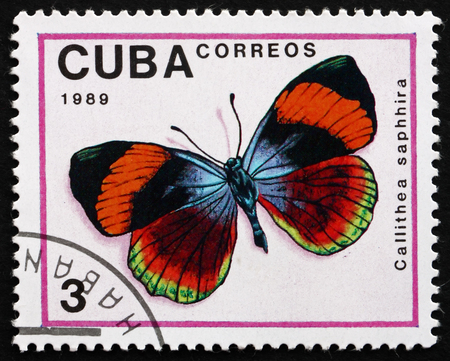 cuba butterfly: CUBA - CIRCA 1989: a stamp printed in the Cuba shows Calithea Saphhira, Butterfly, circa 1989