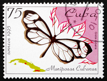 cuba butterfly: CUBA - CIRCA 1995: a stamp printed in the Cuba shows Cuban Clearwing, Greta Cubana, Butterfly, circa 1995