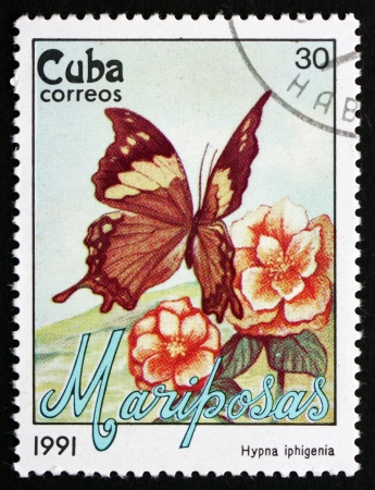 cuba butterfly: CUBA - CIRCA 1991: a stamp printed in the Cuba shows Jazzy Leafwing, Hypna Clytemnestra Iphigenia, Butterfly, circa 1991