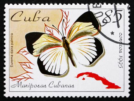cuba butterfly: CUBA - CIRCA 1995: a stamp printed in the Cuba shows Fairy Yellow, Eurema Daira Palmira, Butterfly, circa 1995