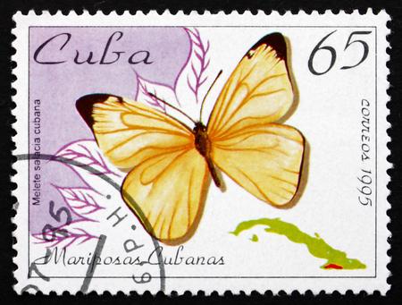 cuba butterfly: CUBA - CIRCA 1995: a stamp printed in the Cuba shows Black-striped White, Melete Salacia Cubana, Butterfly, circa 1995