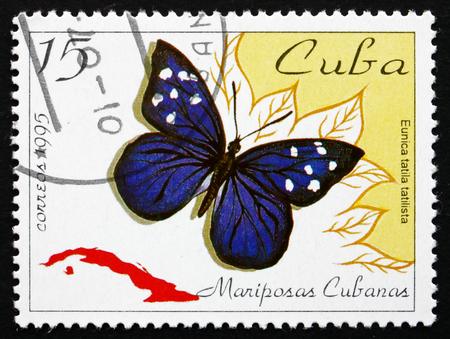 cuba butterfly: CUBA - CIRCA 1995: a stamp printed in the Cuba shows Florida Purplewing, Eunica Tatila, Butterfly, circa 1995