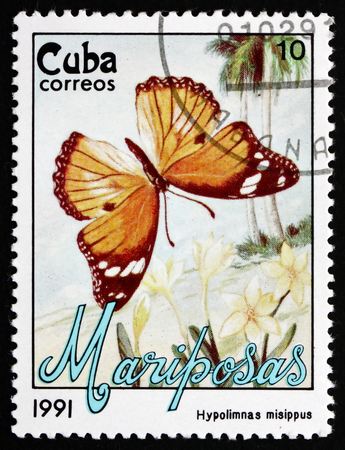 cuba butterfly: CUBA - CIRCA 1991: a stamp printed in the Cuba shows Danaid Eggfly, Hypolimnas Misippus, Butterfly, circa 1991 Editorial