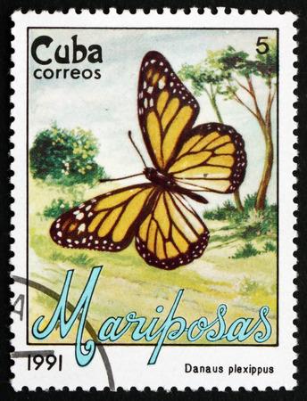 cuba butterfly: CUBA - CIRCA 1991: a stamp printed in the Cuba shows Monarch Butterfly, Danaus Plexippus, Butterfly, circa 1991