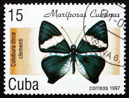 cuba butterfly: CUBA - CIRCA 1997: a stamp printed in the Cuba shows Dirce Beauty, Colobura Dirce Clementi, Butterfly, circa 1997