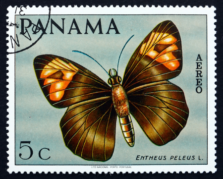 PANAMA - CIRCA 1968: a stamp printed in the Panama shows Skipper Butterfly, Entheus Peleus, Butterfly, circa 1968