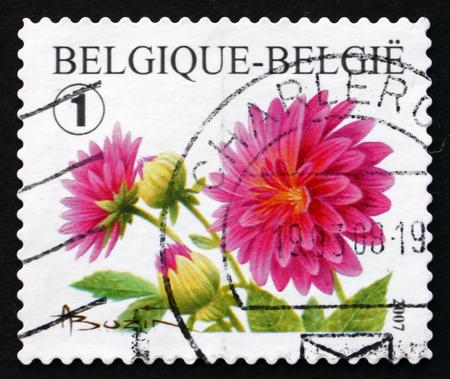 BELGIUM - CIRCA 2007: a stamp printed in the Belgium shows Dahlias, Flowering Plant, circa 2007