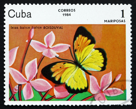 cuba butterfly: CUBA - CIRCA 1984: a stamp printed in the Cuba shows Ixias Balice, Butterfly, circa 1984 Editorial