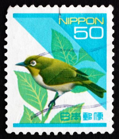 passerine: GIAPPONE - CIRCA 1992 un francobollo stampato in Giappone mostra giapponese White-eye, Zosterops Japonicus, uccello passeriforme, circa 1992