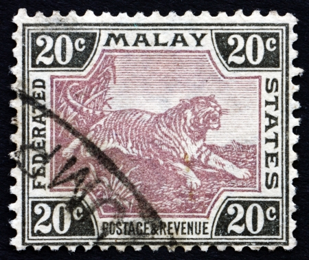 MALAYA - CIRCA 1905: a stamp printed in Malaya shows Tiger, Panthera Tigris, Animal, circa 1905