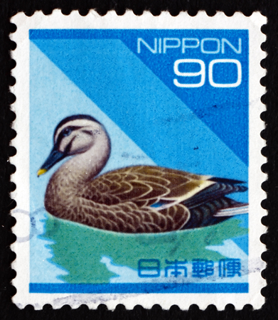 dabbling: JAPAN - CIRCA 1992 a stamp printed in the Japan shows Eastern Spot-billed Duck, Anas Poecilorhyncha Zonorhyncha, Dabbling Duck, circa 1992