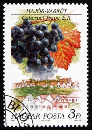 cabernet: Hungr�a - alrededor de 1990: un sello impreso en la Hungr�a muestra Cabernet Franc, Hajos-Vaskut, alrededor de 1990