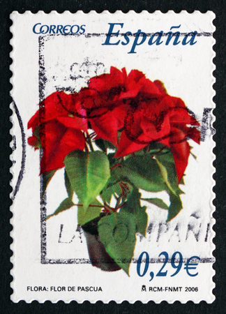 SPAIN - CIRCA 2006: a stamp printed in the Spain shows Poinsettia, Euphorbia Pulcherrima, Plant, circa 2006